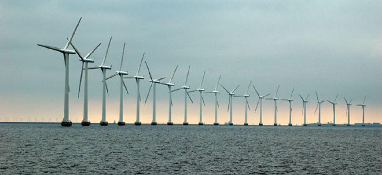 Afbeelding van Nederland scoort slecht op milieuranglijst EU