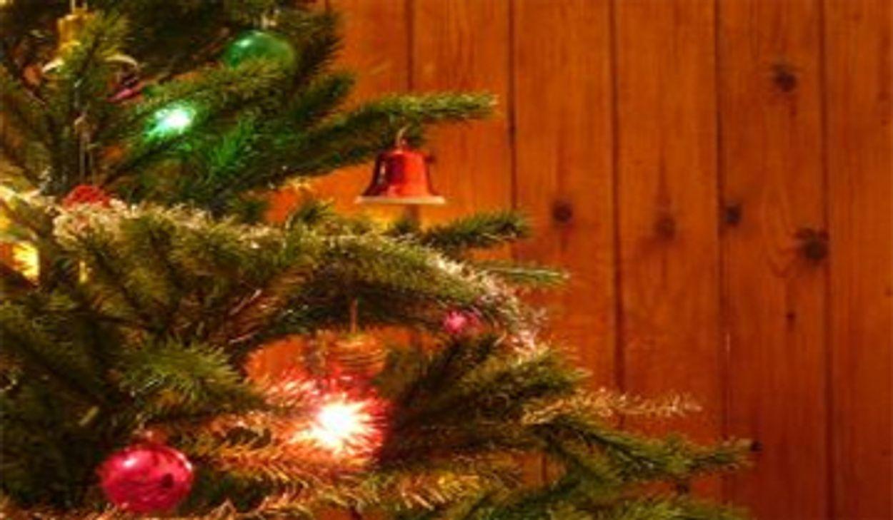 Afbeelding van Nederlanders weer massaal op kerstvakantie