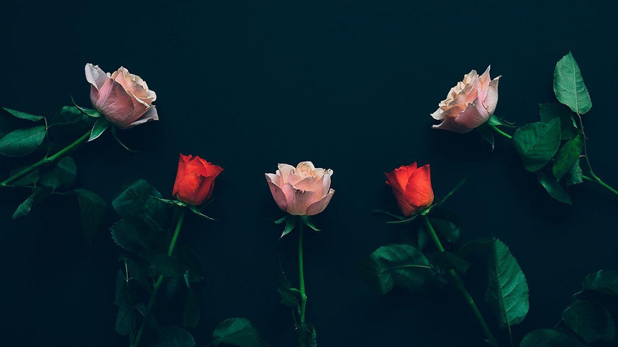 Afbeelding van Help! Valentijnsdag staat voor de deur. Kassa geeft tips