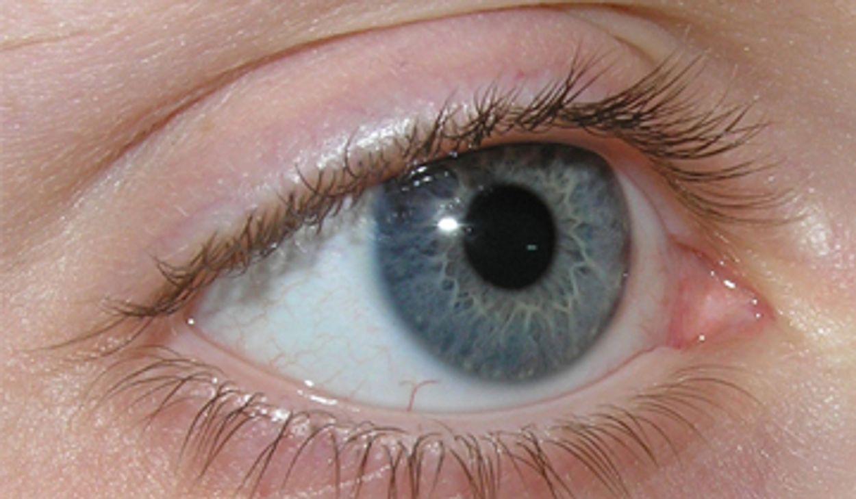 Afbeelding van Grote verschillen bij oogmetingen door opticiens