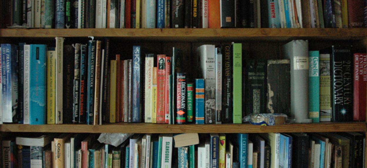 Afbeelding van Nieuw publiek trekt de bibliotheken in