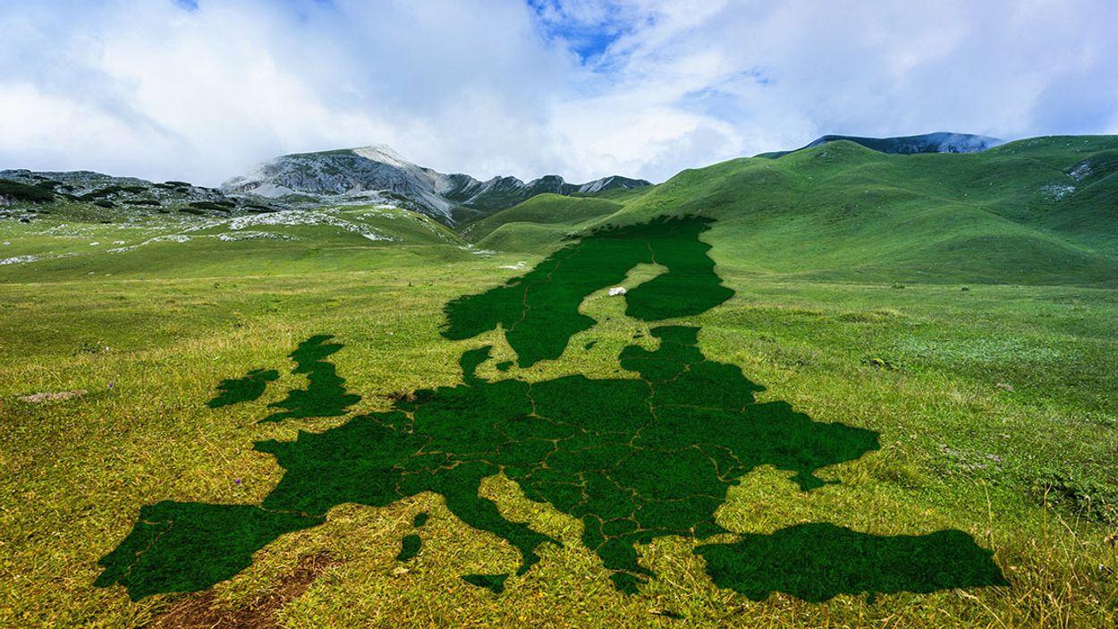 Afbeelding van 1000 miljard euro moet EU klimaatneutraal maken