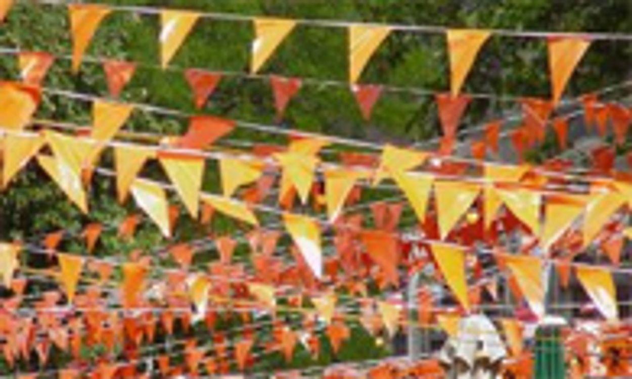 Afbeelding van VWA waarschuwt voor brandbaarheid oranje-artikelen