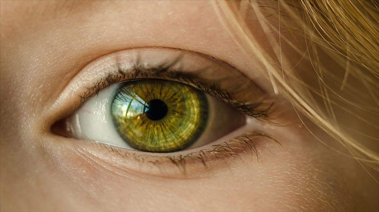 Afbeelding van GrandVision neemt online opticien Charlie Temple over