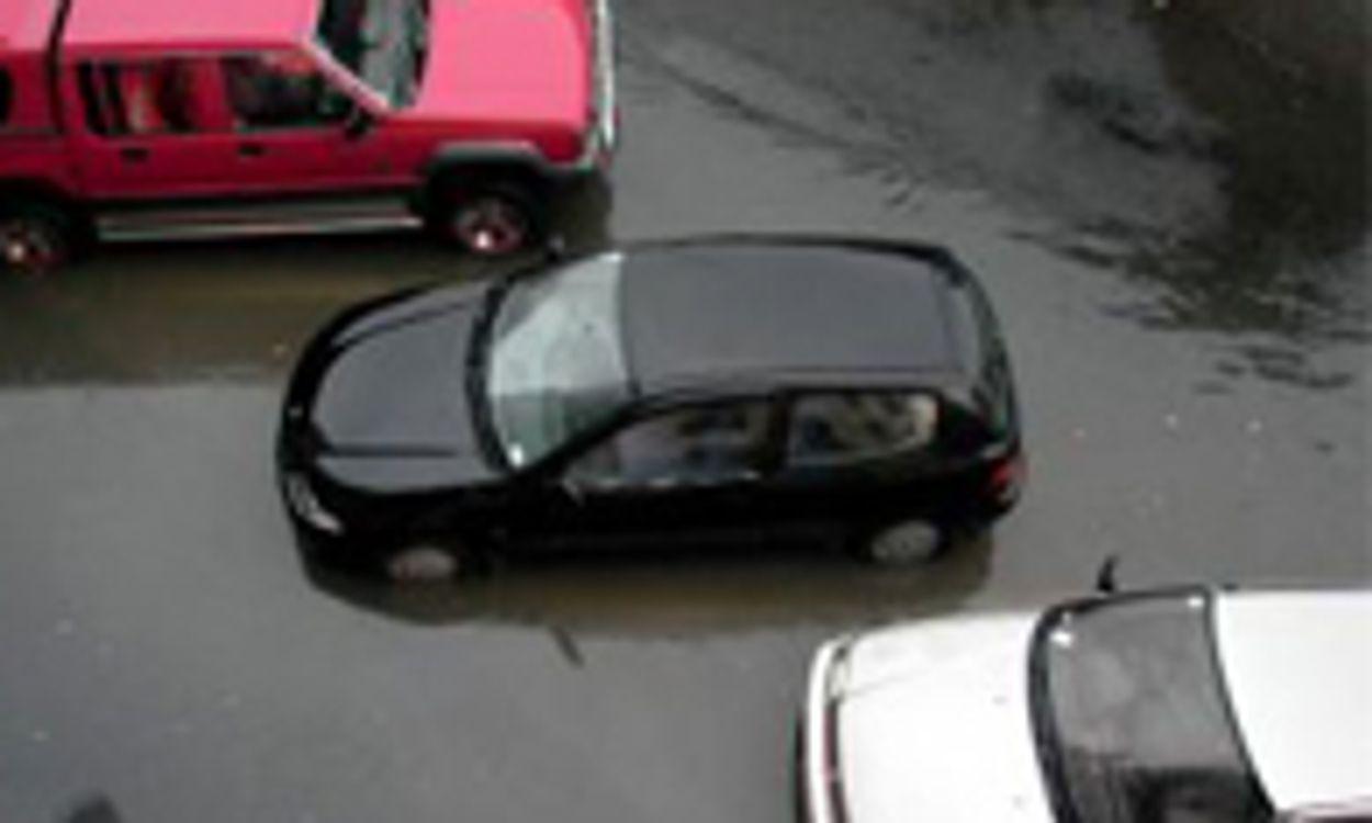 Afbeelding van Auto's Nederlanders weggespoeld