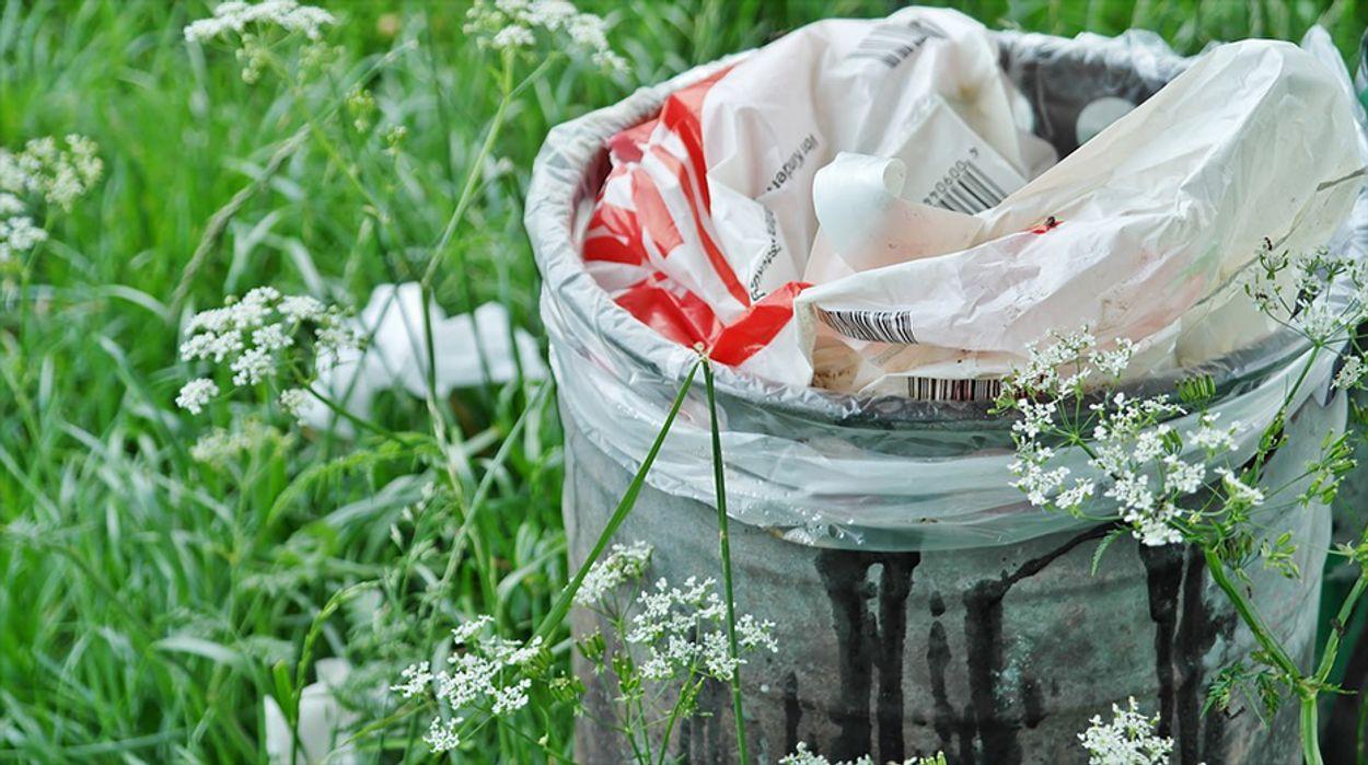 Afbeelding van De zin en onzin van afvalscheiding