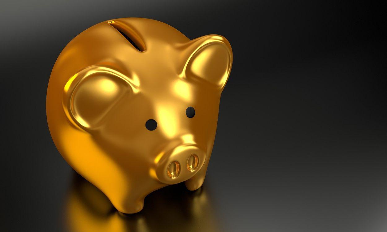 Afbeelding van Een op zeven Nederlanders heeft geen financiële buffer