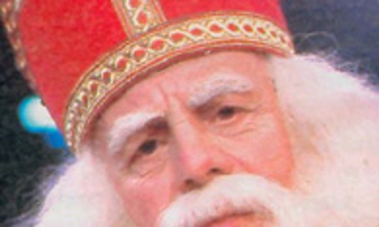 Afbeelding van 'Sinterklaas immens populair'