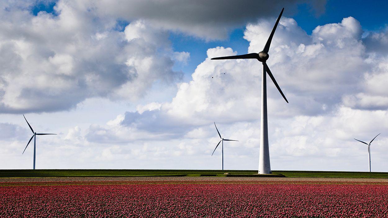 Afbeelding van Klimaatdoelen vereisen extra maatregelen kabinet