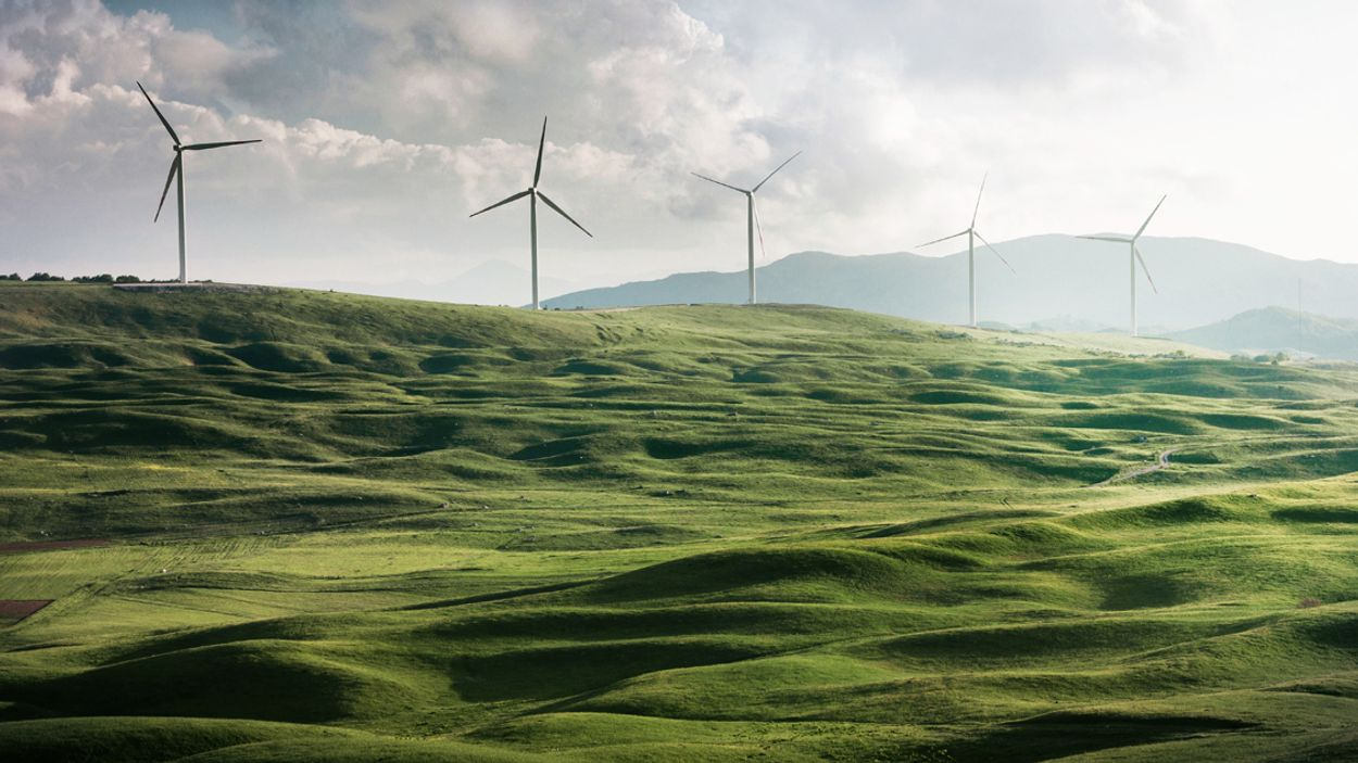 Afbeelding van Voor het eerst meer duurzame energie dan energie opgewekt uit steenkool