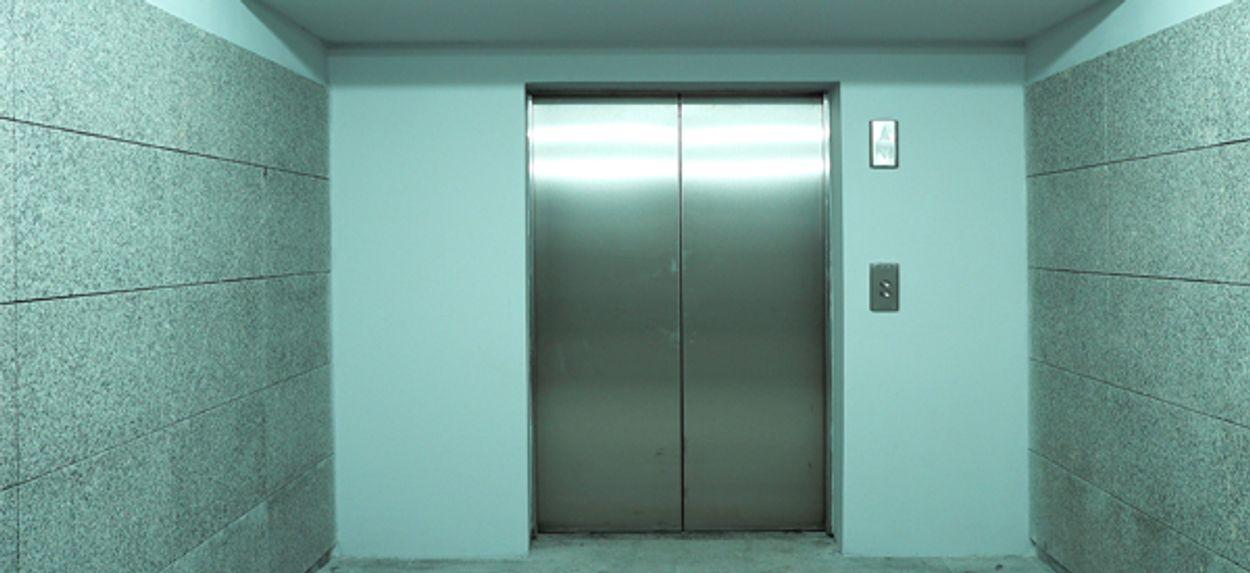 Afbeelding van Liftinstituut waarschuwt hondenbezitters