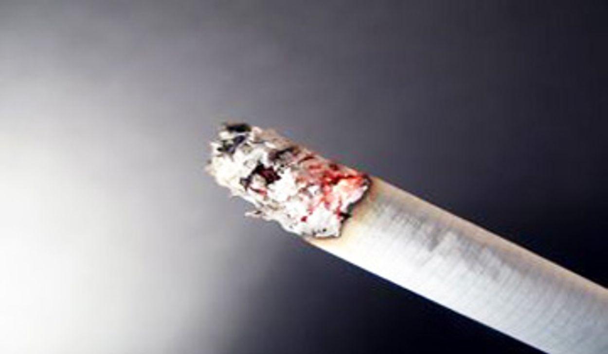 Afbeelding van Branche klaar voor zelfdovende sigaret