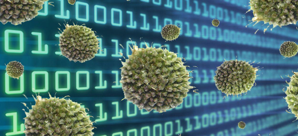 Afbeelding van 'Geen grote infectie Nederlandse computers'