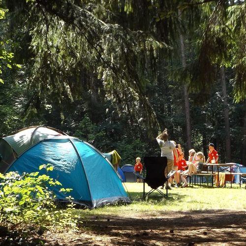 Afbeelding van Goede zomer voor campings en hotels