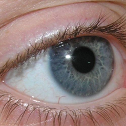 Afbeelding van Vitamine D goed tegen 'oogveroudering'?