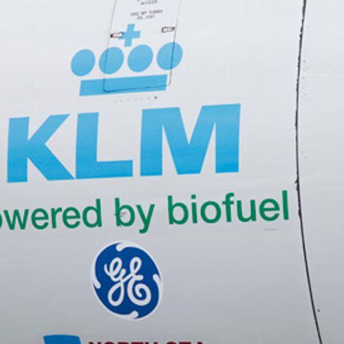 Afbeelding van KLM begint 'patatvluchten' New York