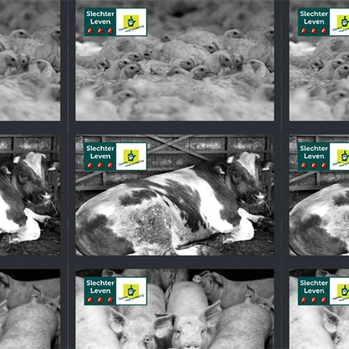 Afbeelding van Stickeractie Lubach tegen de bio-industrie 'gaat heel hard'