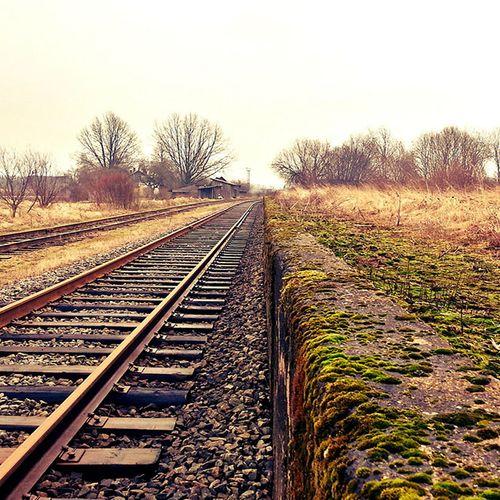 Afbeelding van ProRail: Spoor niet berekend op hevige regen en hitte