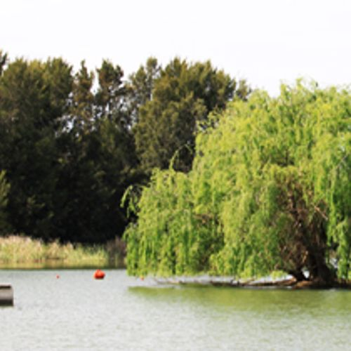 Afbeelding van 'Zwemmen in rivieren levensgevaarlijk'