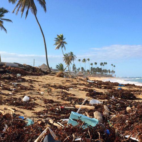 Afbeelding van Caribisch Nederland zweert wegwerpplastic af