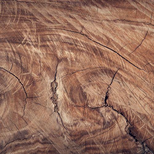 Afbeelding van Hoe kun je milieuvriendelijk hout herkennen?