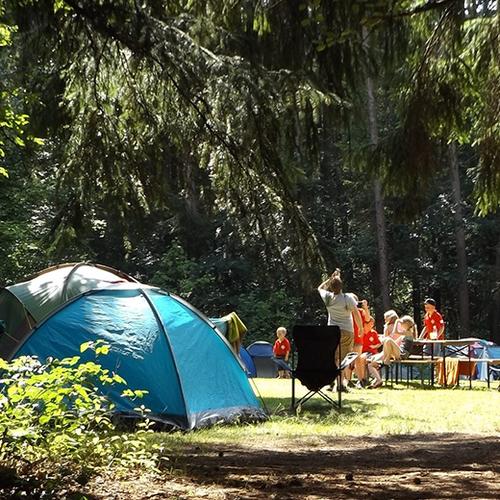Afbeelding van Toenemende drukte op kampeerterreinen