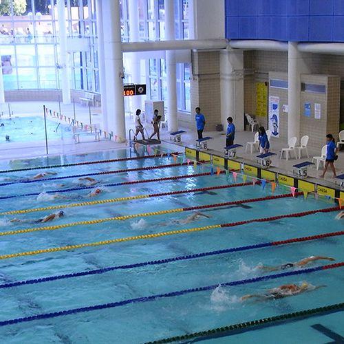 Afbeelding van Kleine zwembaden dreigen ten onder te gaan
