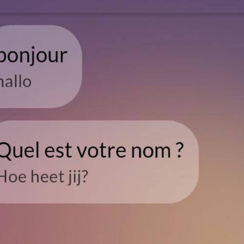 Afbeelding van App review: Met welke app kan ik het beste een taal leren?