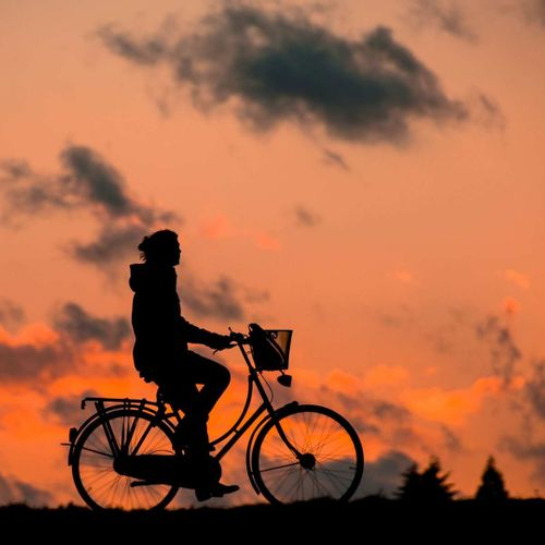 Afbeelding van Fietsersbond: te weinig fietsplekken in de trein