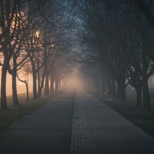 Afbeelding van Slecht zicht door mist tijdens jaarwisseling