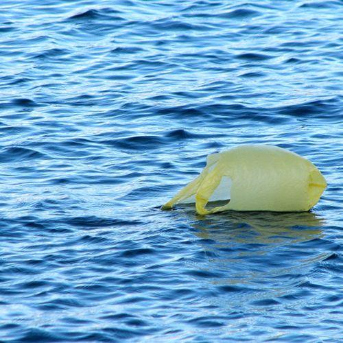 Afbeelding van Toerisme grote bron plastic Middellandse Zee
