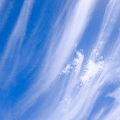 Afbeelding van Tienduizenden tekenen petitie voor gezondere lucht