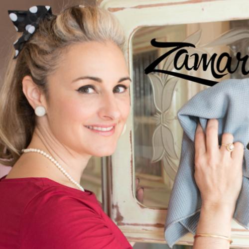 Afbeelding van Heb jij een vraag voor huishouddeskundige Zamarra?