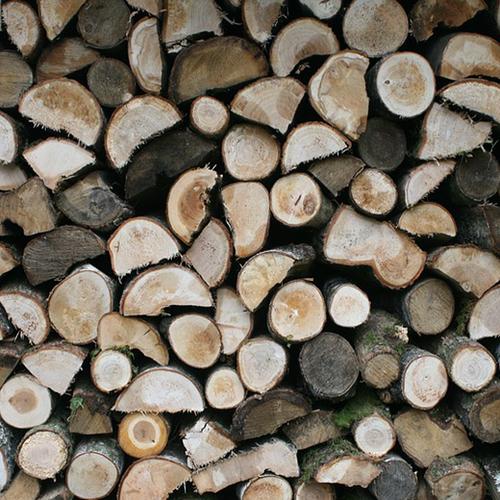Afbeelding van NVWA treedt op tegen houtimporteur