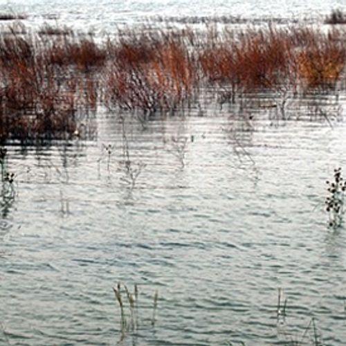 Afbeelding van 'Spring niet zomaar in open water'